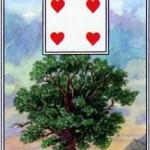 Dienos prognozė post faktum – 5 kortų eilutė